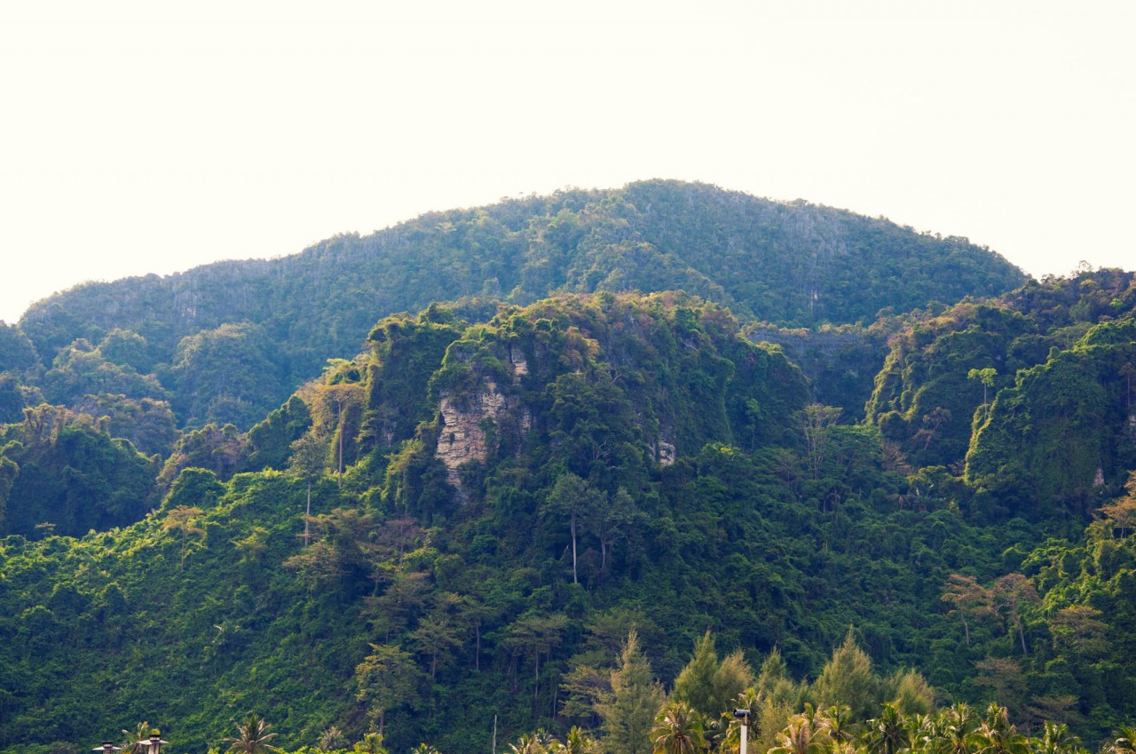 Phi-Phi, Thailand, rocks covered by jungles